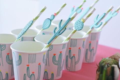 cactus cups 6